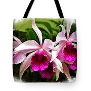 Pink Cattleya Cluster Tote Bag