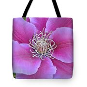 Pink Clematis Beauty Tote Bag