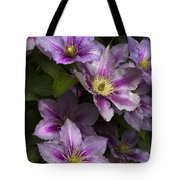 Pink Clematis Tote Bag