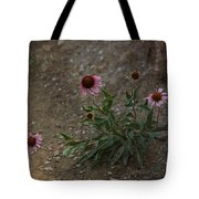 Pink Cone Flower's Close Up In A Road Tote Bag