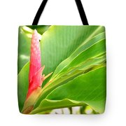 Pink Cone Ginger Bud Tote Bag