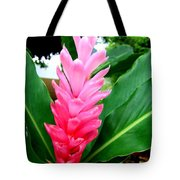 Pink Cone Ginger Tote Bag