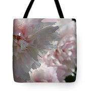 Pink Confection Tote Bag