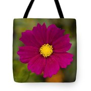 Pink Cosmos 3 Tote Bag by Roger Snyder