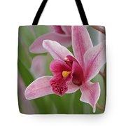 Pink Cymbidium Orchid Tote Bag