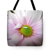 Pink Daisy Freshness With Water Droplets Tote Bag