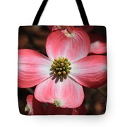 Pink Dogwood At Easter 5 Tote Bag