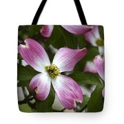 Pink Dogwood Blossom Up Close Tote Bag