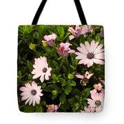 Pink Edge Tote Bag