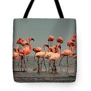 Pink Famingo Tote Bag