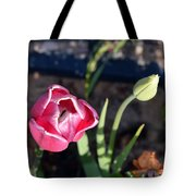 Pink Flower And Bud Tote Bag