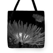 Pink Flower-bw Tote Bag
