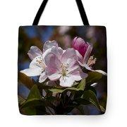 Pink Flowering Crabapple - Malus Tote Bag
