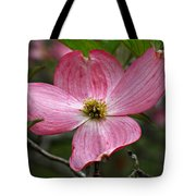 Pink Flowering Dogwood Tote Bag