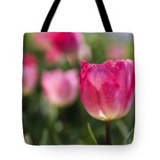Pink Glowing Tulip Tote Bag