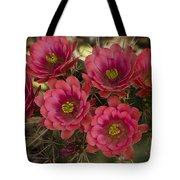 Pink Hedgehog Cactus Flowers  Tote Bag