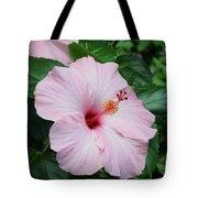 Pink Hibiscus #3 Tote Bag