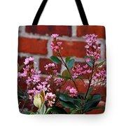 Pink Indian Hawthorne Tote Bag