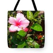 Pink Java Flower  Tote Bag