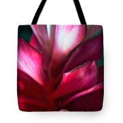 Pink Journey Tote Bag