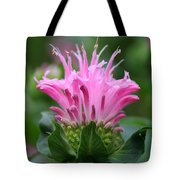 Pink July Tote Bag