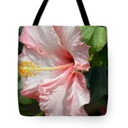 Pink Lady 2013 Tote Bag