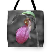 Pink Lady Slipper Partial Color Tote Bag