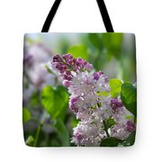 Pink Lilacs And Green Leaves - Featured 3 Tote Bag