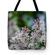 Pink Lilacs - Featured 2 Tote Bag
