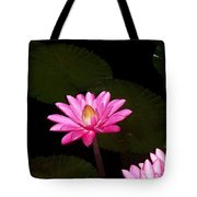 Pink Lilies And Pads Tote Bag