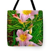 Pink Lilies Near Ottawa-on Tote Bag