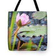 Pink Lily And Pads Tote Bag