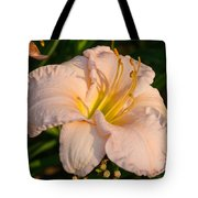 Pink Lily At Sunset 1 Tote Bag