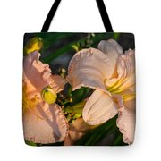 Pink Lily At Sunset 2 Tote Bag
