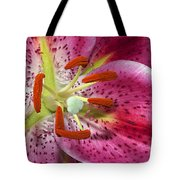 Pink Lily Up Close Tote Bag