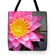 Pink Lotus Flower - Zen Art By Sharon Cummings Tote Bag