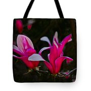 Pink Magnolia Tote Bag