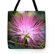 Pink Mimosa Flower Tote Bag