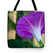 Pink Morning Glory Tote Bag