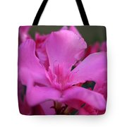 Pink Oleander Flower With Green Leaves In The Background   Tote Bag