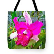 Pink Orchid At Maerim Orchid Farm In Chiang Mai-thailand Tote Bag