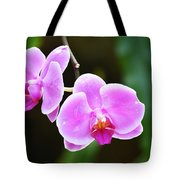 Pink Orchid Tote Bag