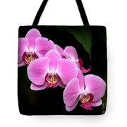Pink Orchids In A Row Tote Bag