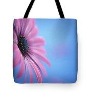 Pink Osteospermum Flower On Blue Tote Bag