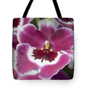 Pink Pansy Orchid Tote Bag