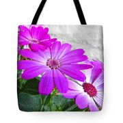Pink Perciallis Ragwort Flower Art Prints Tote Bag