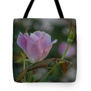Pink Perfection Tote Bag