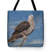 Pink Pigeon Tote Bag
