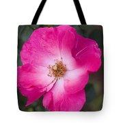 Pink Pink Tote Bag