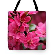 Pink Plum Blossoms Tote Bag